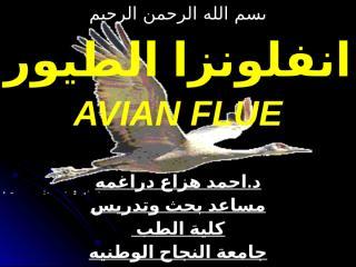 AVIAN FLUE.ppt