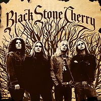 Blackstone Cherry- Shooting Star.mp3