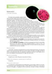 (2) SANDIA.pdf